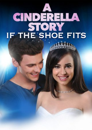 A cinderella story If the shoe fits_Poster_1